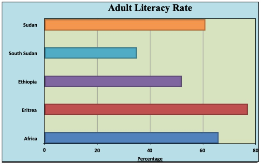 Eritrea is making steady progress in improving adult literacy.